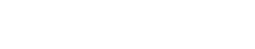 netevolution-logo.png